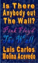 Libro Is There Anybody Out The Wall, autor Luis Carlos Molina Acevedo